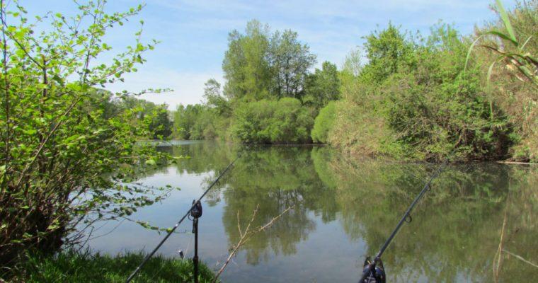 Comment pêcher le sandre